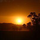 Summer Sunset   by GailD