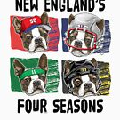 The Four Seasons of New England Sports Dogs  by MudgeStudios