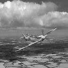 Hispano Buchon in Battle of Britain markings by Gary Eason