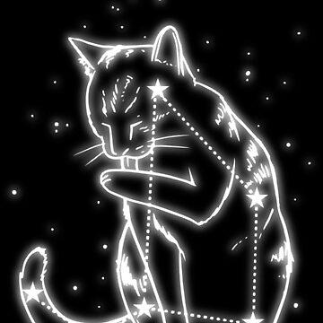 The Catus Minorus Constellation by yoga234