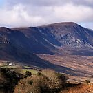 Mayo Mountains by dougbphotos