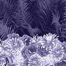 Dunkle Schattierungen von Lavendel von creativevibe