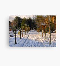 Snow Scene~ Canvas Print