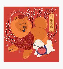 Familiar - Chow Chow Photographic Print
