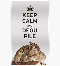 Keep Calm and Degu Pile Poster