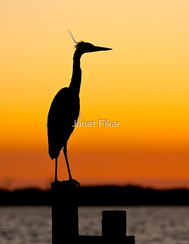 Graceful Creature by Janet Fikar