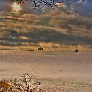 Snow Blanket by Daniel Knights