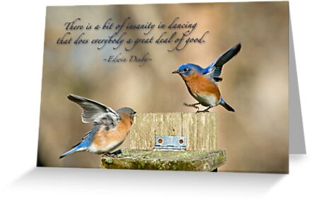 Dancing bluebirds greeting cards by bonnie t barry redbubble dancing bluebirds by bonnie t barry m4hsunfo Image collections