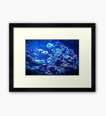 The Deep Blue Serenity Framed Print