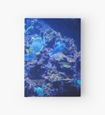 The Deep Blue Serenity Hardcover Journal