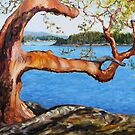 Arbutus Tree Reaching by TerrillWelch