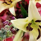 Floral Fun by jhennetylerb