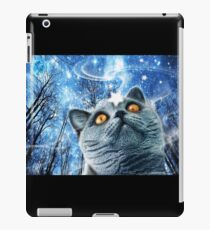 Blue Cat and the Little Star iPad Case/Skin