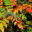 Der Herbst ist ein Maler # 2, Haywards Heath, England von atomov