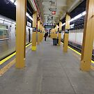 Subway station, New York, Brooklyn, Manhattan, New York City, Buildings, streets, trees by znamenski