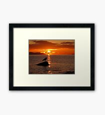 Check it out eh! Framed Print