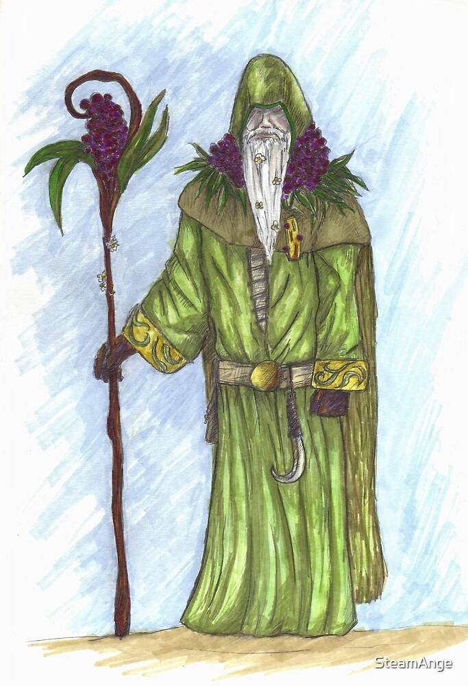 Celtic druid by SteamAnge