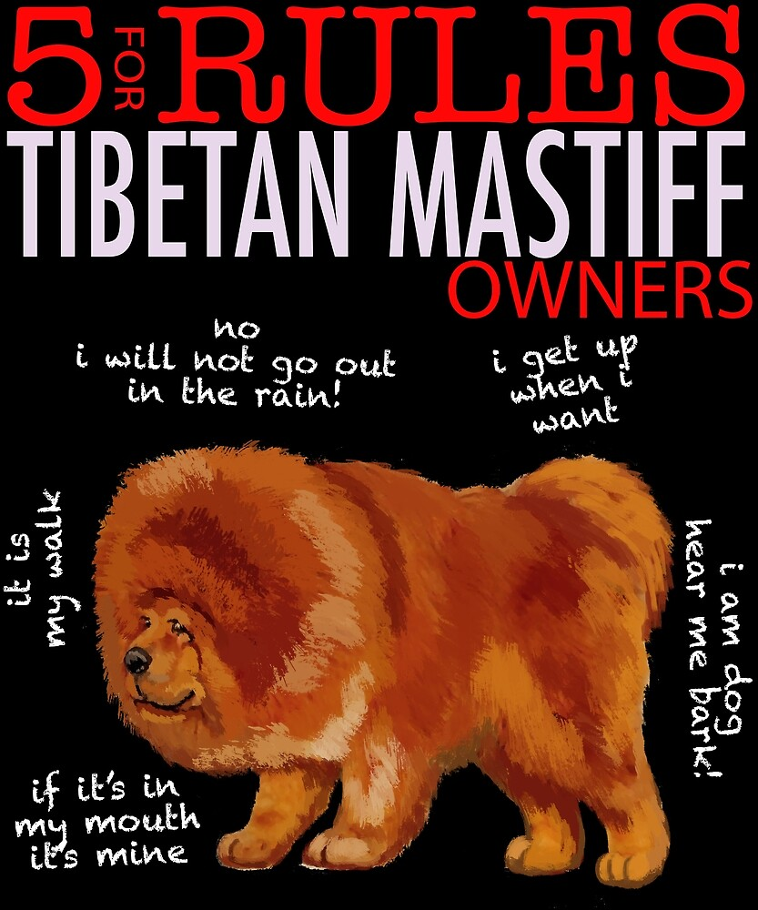 5 Rules for Tibetan Mastiff Owners by MichaelRellov