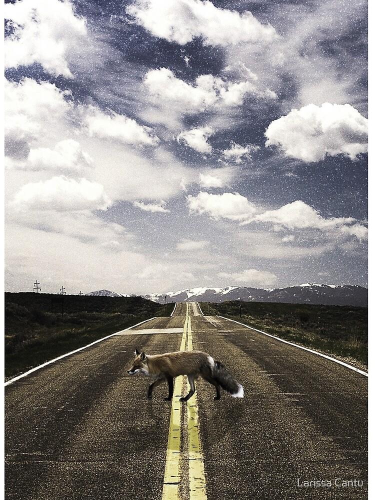 Lonely Walker by itskylarfox