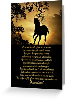 Horse Memorial Original Poem by Stephanie Laird