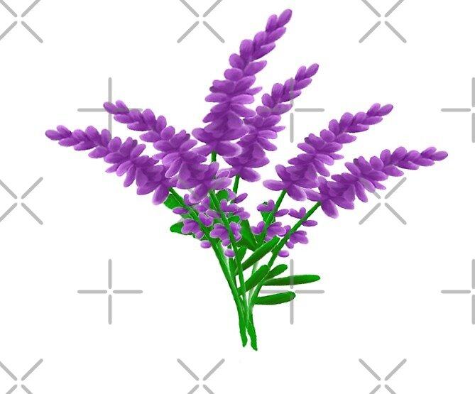 Lavender  by pesq