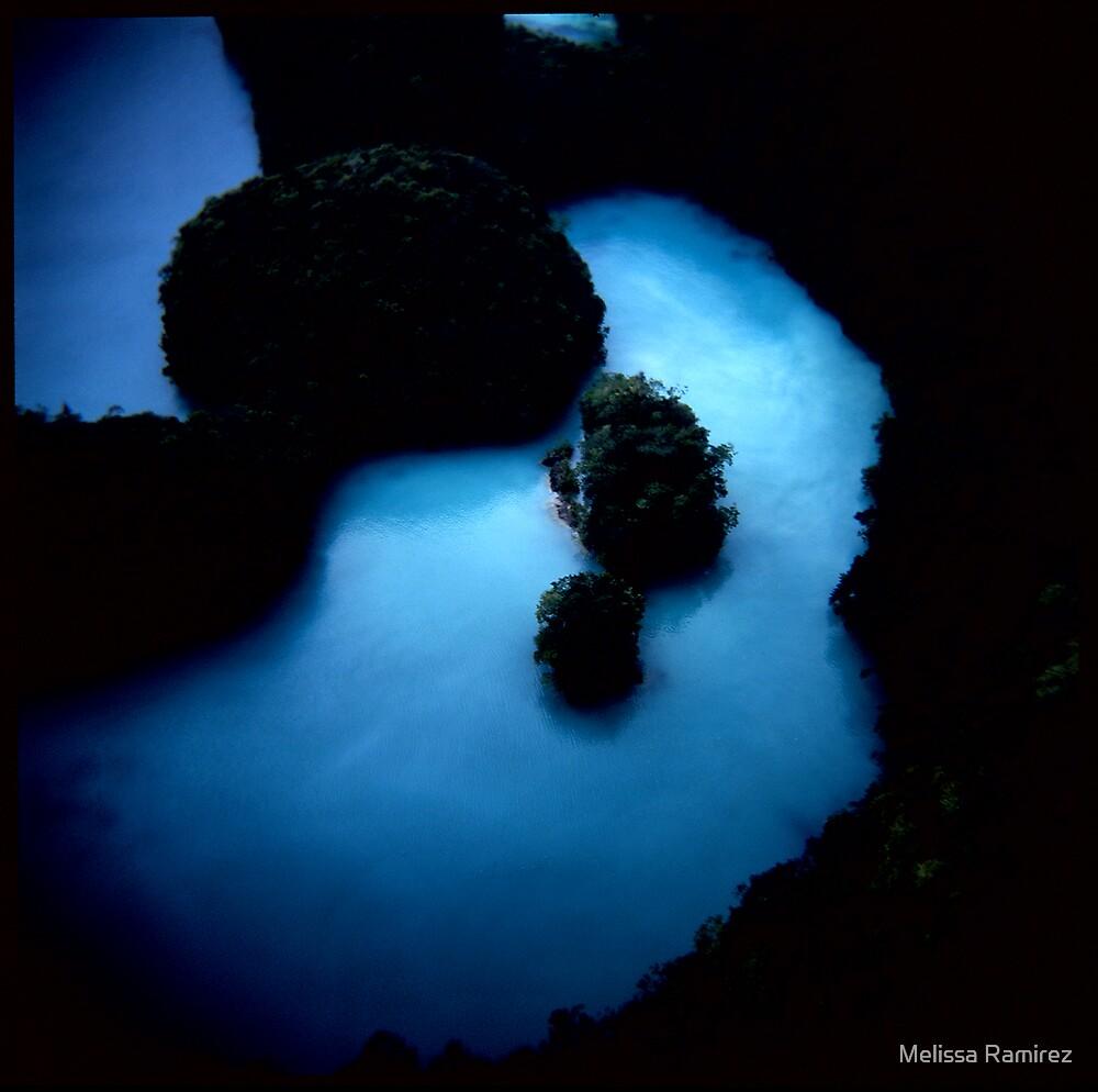 Milky Way by Melissa Ramirez