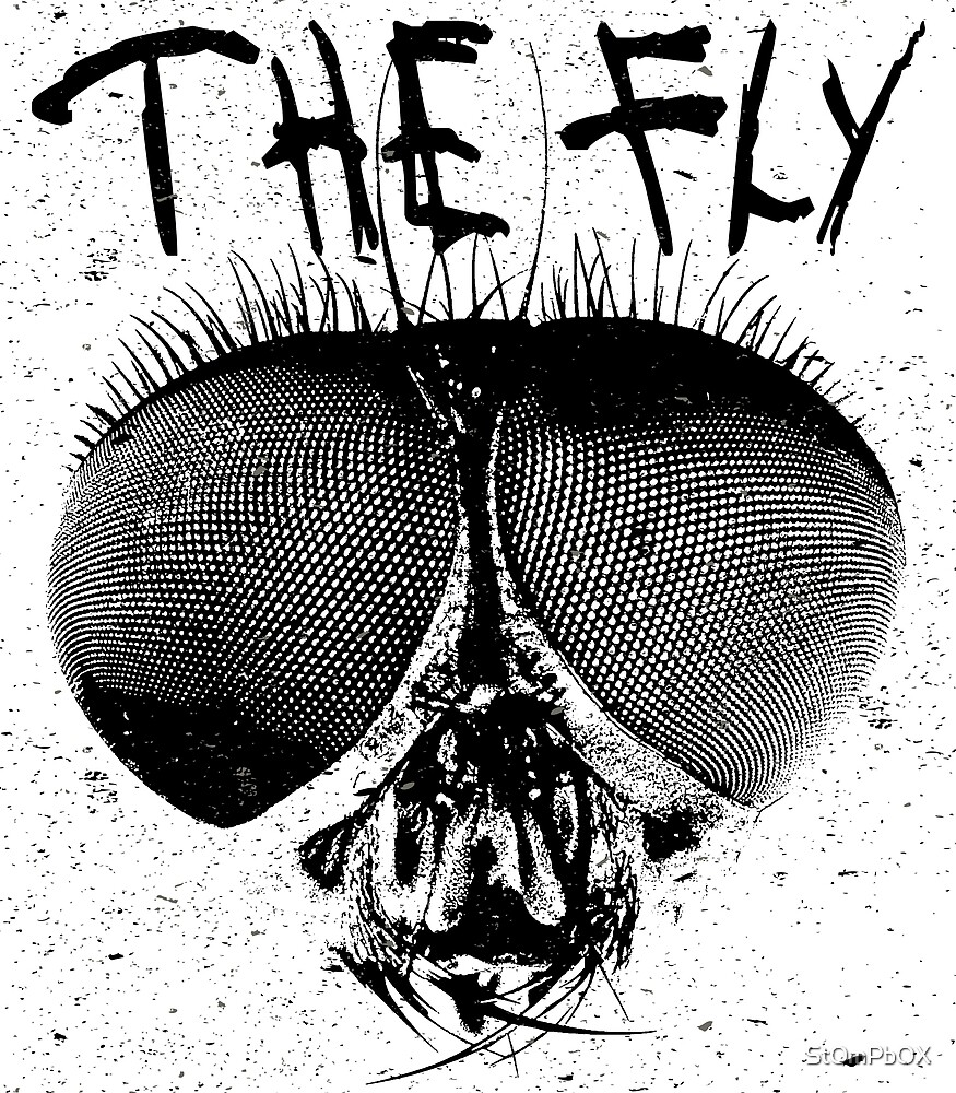 The Fly Head by StOmPbOX
