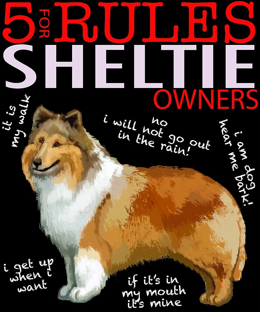 5 Rules for Sheltie Owners by MichaelRellov