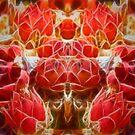 Cactus Fractalius by thegrizz15