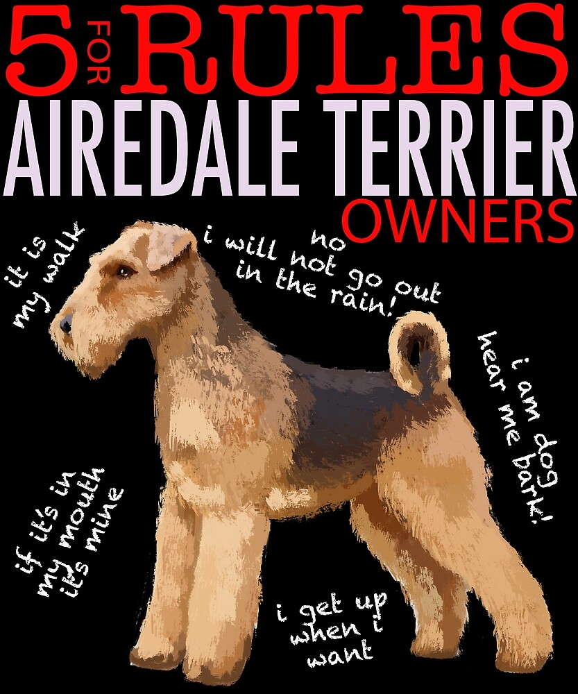 5 Rules for Airedale Terrier Owners by MichaelRellov