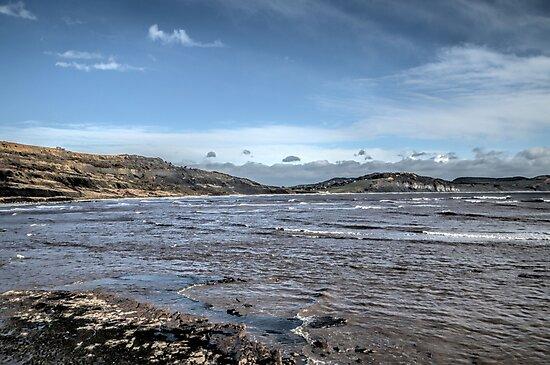 Lyme Regis  at Low Tide ........UK by lynn carter