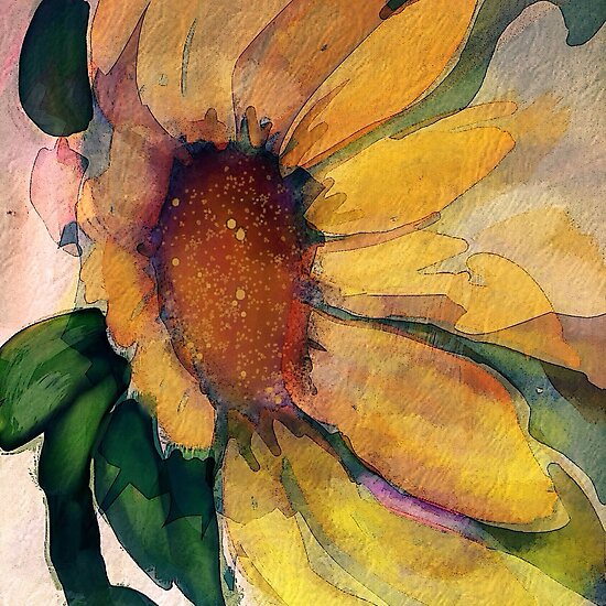 Sunflower in watercolor and pen by Toni  Ciserella