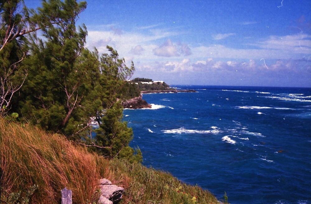Bermuda seaside by RenaudMartini