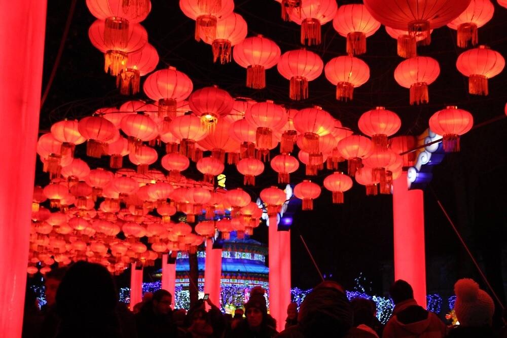 chinese lantern by Polarisl4