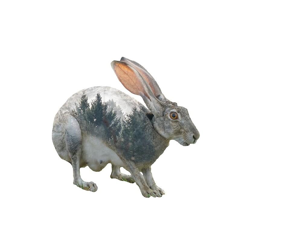Rabbit Double Exposure by StephMarten