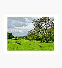 Rivington Pastureland Art Print