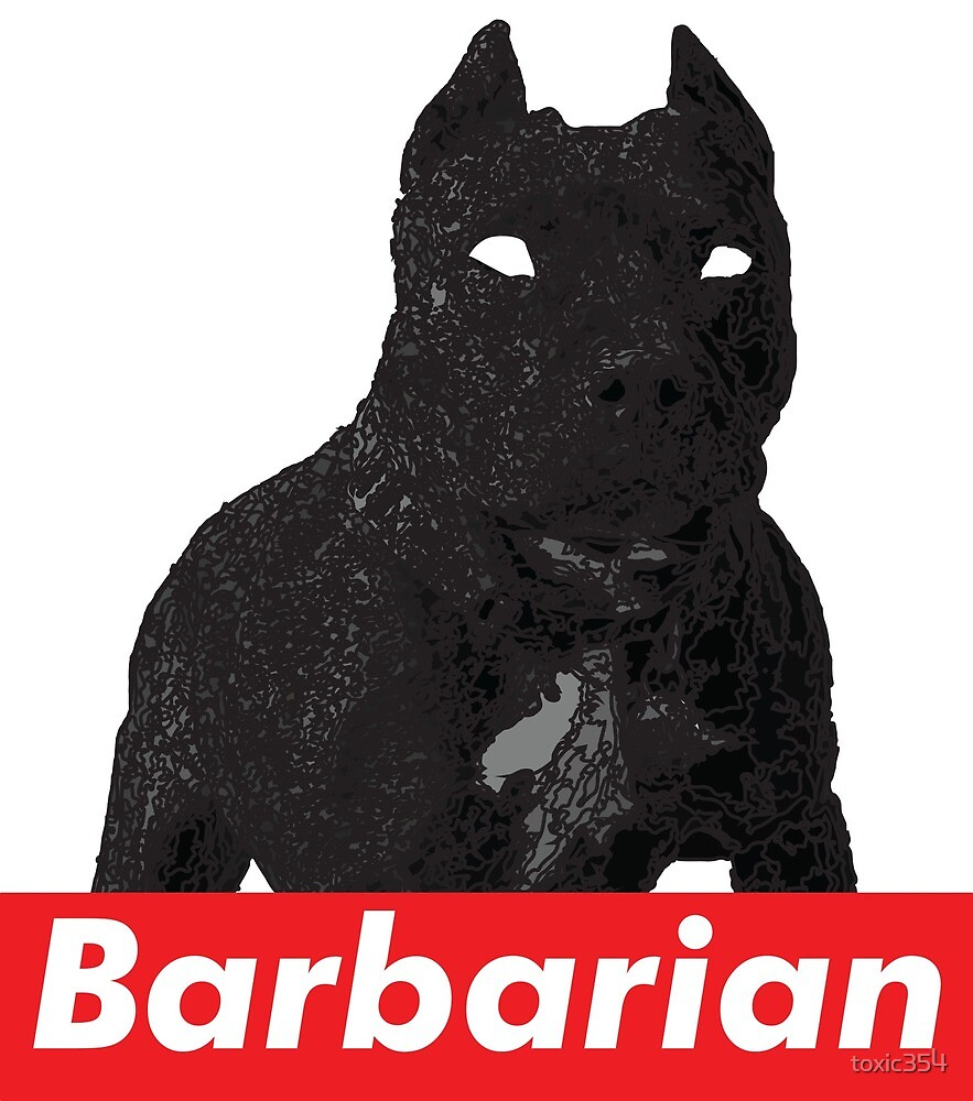 Barbarian by toxic354