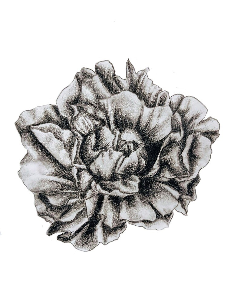 Flower Power by Gaelgetron
