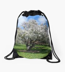 Blooming White Crabapple Tree in Springtime Drawstring Bag