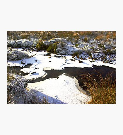 Brandsdale Beck - Yorkshire Dales. Photographic Print