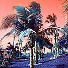 Tropical Breeze by Holly Martinson