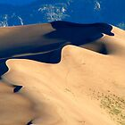 Great Sand Dunes NP 2 by Virginia Maguire