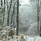 Snow Comes to the  Little Pond  by fiat777