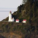 Heceta Head Lighthouse, Oregon Coast by aussiedi