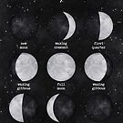 Lunar Phases by nikury
