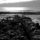 Low Tide by Jonathan Dower