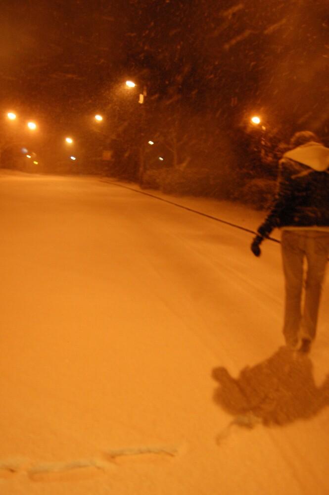 Snow scene by TMRiley