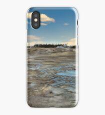 Desolate Beauty iPhone Case/Skin