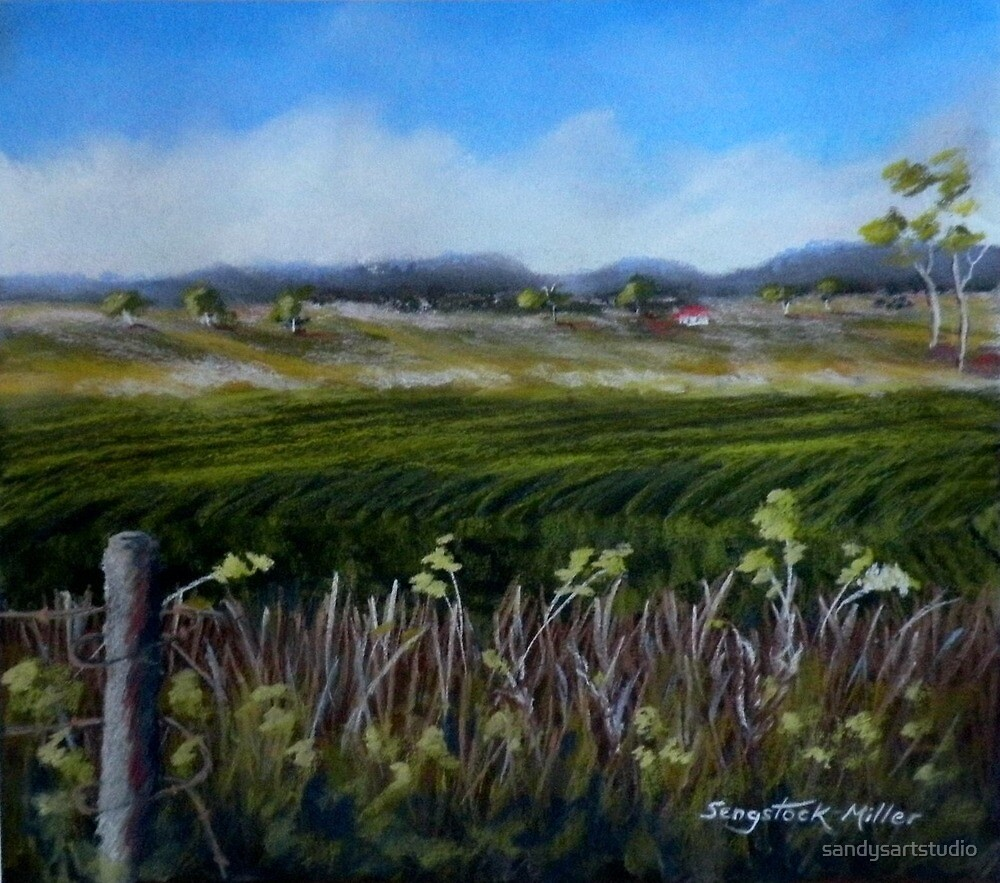Crops in the landscape.   Toowoomba Australia by sandysartstudio