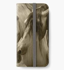 The beauty of the Horse.  iPhone Wallet/Case/Skin